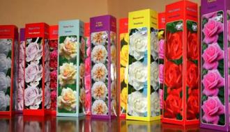 Розы в воске (парафине)